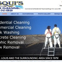 Bosqui's Mobile Cleaning