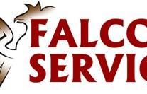 Falcon Service Logo