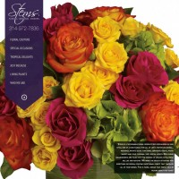 New Website for Stems Florist Now LIVE